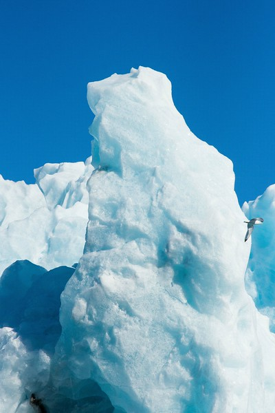 Svalbard - High Res-8.jpg