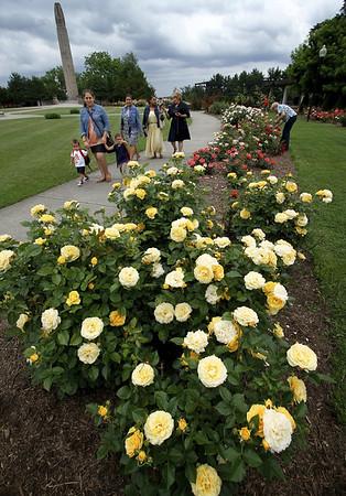 rosegarden-nb-072917