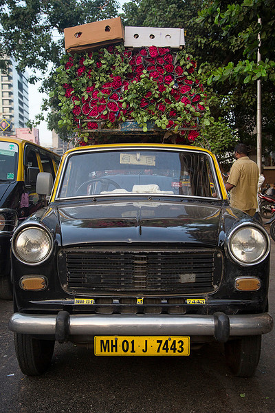 Rose taxi