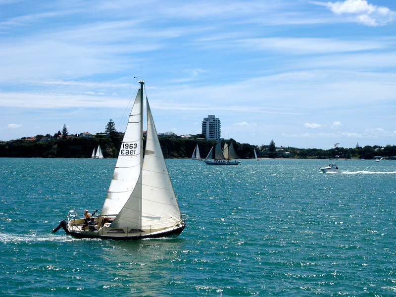 Boats in Auckland, New Zealand
