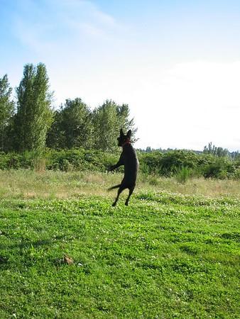 2005.07.09 Magnusson Park