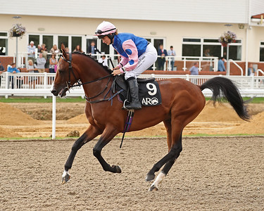 7 The UK Arabian Derby Group1 PA (0-40) Hcp Stakes 1m2f