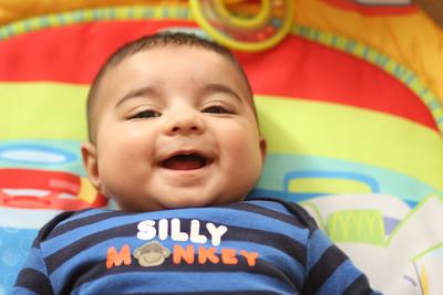 SillyMonkey