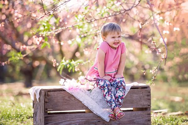 Peach blossoms feb 2020 - Siciliani