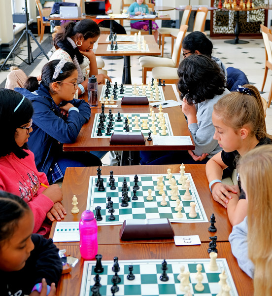 Blenheim Chess 2019 (129).JPG