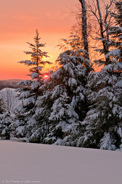 Winter morning sunrise.  If you would like a framed picture click here: http://fineartamerica.com/featured/winter-morning-sunrise-jay-seeley.html