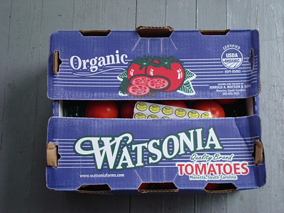 Beefsteak - Watsonia Farms