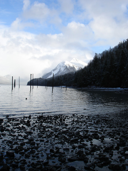 Alaska 2008 161.jpg