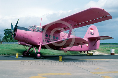 An-2 Colt Easter Egg Military Airplane Pictures
