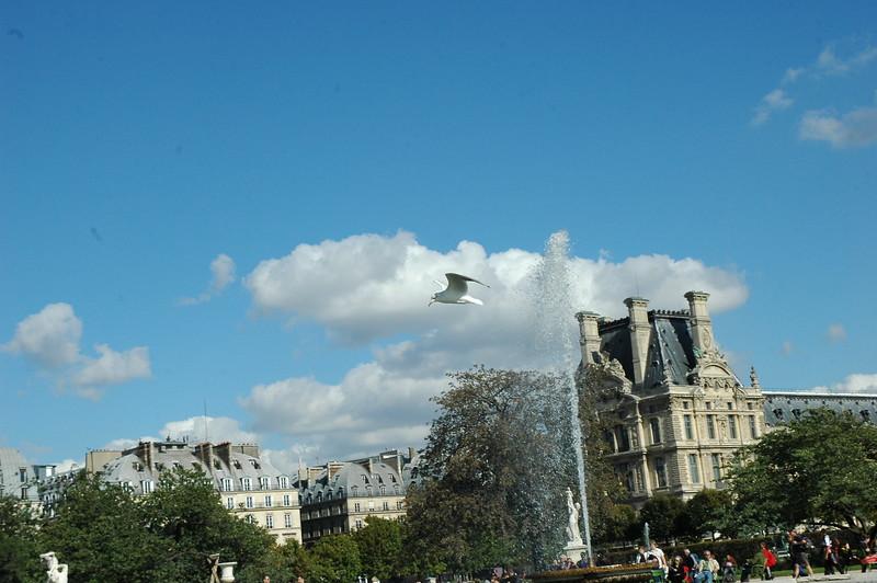 Paris8_0071.JPG