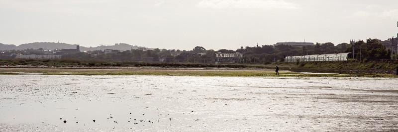 DART train on Dublin Bay