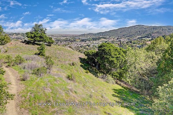 Oak View Lot, San Rafael