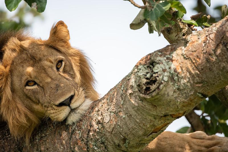 Uganda_T_QE-379.jpg