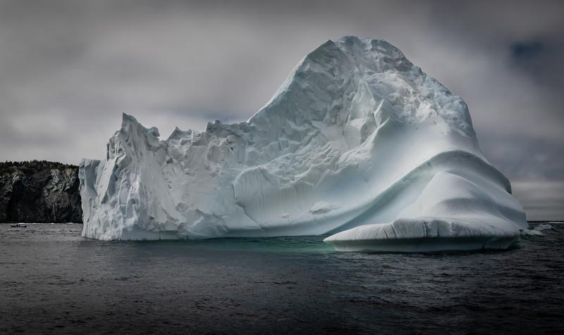 Twillingate Iceberg from tour