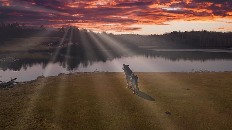 Gunner_GolfCourse2.jpeg