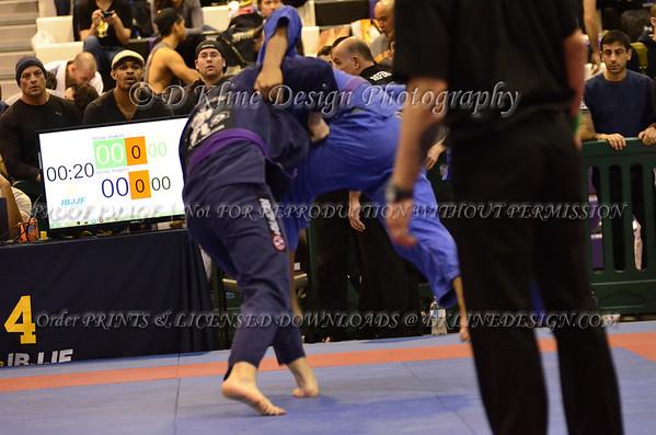New York Spring Open Purple Belts APRIL 5 2014