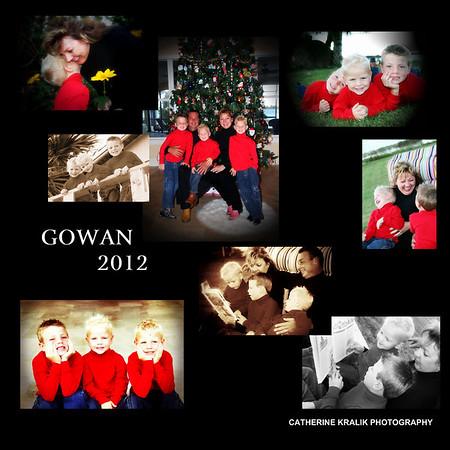 GOWAN FAMILY