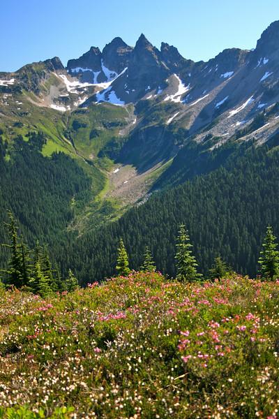 Nice view of Sitting Bull Mtn.