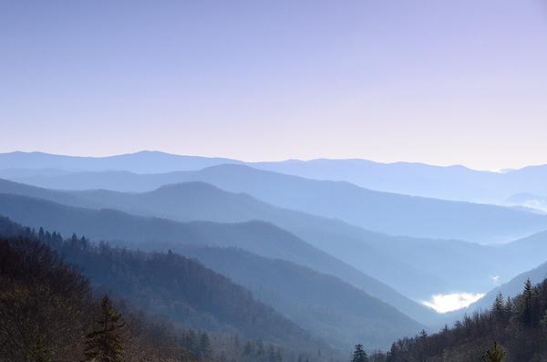 Purple Smoky Mountains