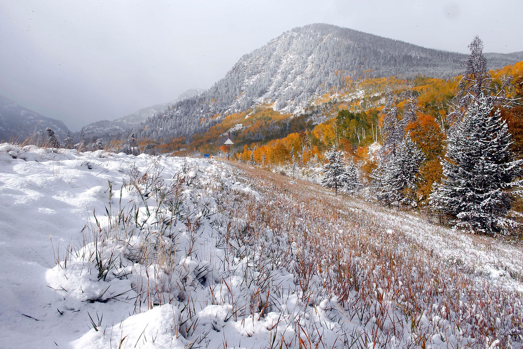 . Fresh snow covers a roadside where Aspen trees turn yellow each Autumn, near Frisco, Colo., Friday Oct. 4, 2013. Powerful storms moved into the Midwest on Friday due to a cold weather system gaining strength as it traveled east from Colorado and Wyoming. (AP Photo/Brennan Linsley)