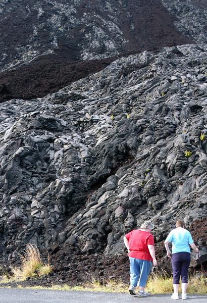 260- 20080412- Hawaii 15- Volcano Nat'l Park DSC_3127.jpg