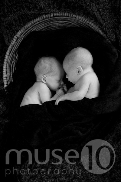 Williams Twins - Newborn