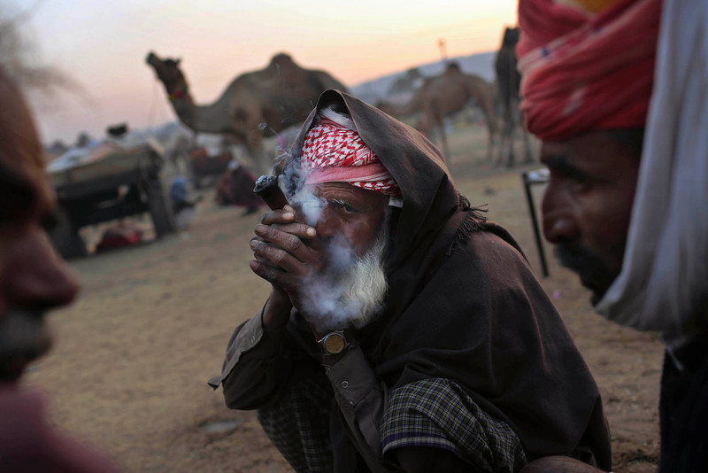 . An Indian camel herder smokes marijuana as he sits with others at the annual Pushkar Fair in Pushkar, Rajasthan, India, Wednesday, Nov. 21, 2012. The annual camel and livestock fair attracts thousands of livestock dealers who bring thousands of camels, horses, and cattle. (AP Photo/Kevin Frayer)