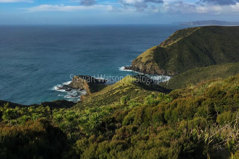 IMG_3956iphone Cape ReingaSmugMug.jpg