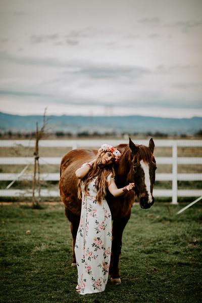 horsey-50.jpg