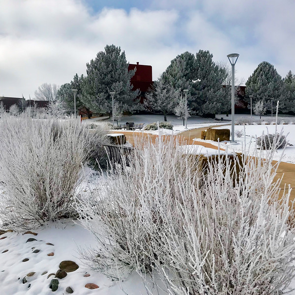 Snow Campus Greeley 10-2.jpg