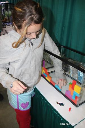 2014 Aquatic Experience & LIVE Shark Show