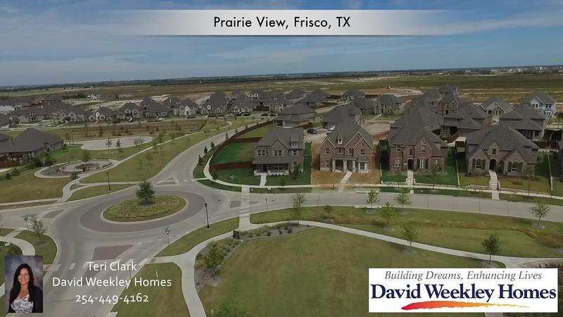 12008 Burnt Prairie Lane, Frisco, Texas