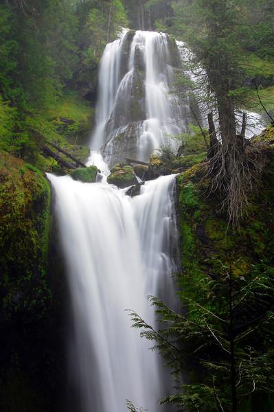 Washington Waterfalls-Lori
