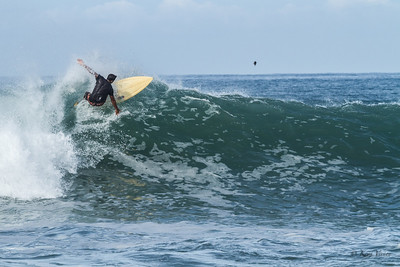 COMINO SURFING NEXPA