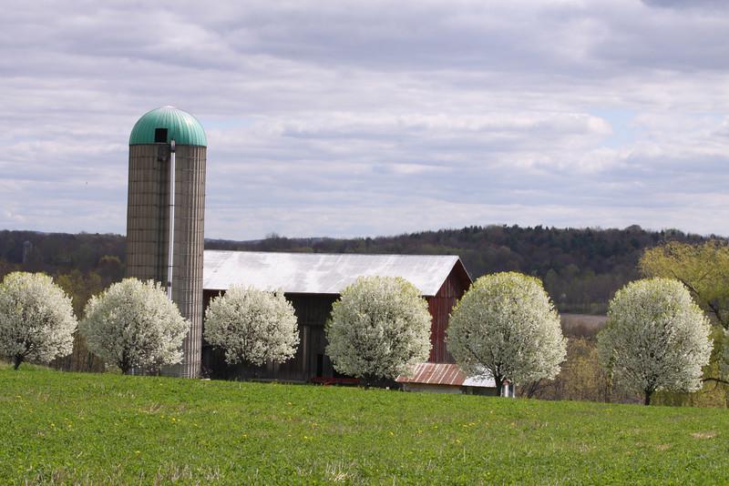 11 05 08 Bradford Co Farms & Towanda
