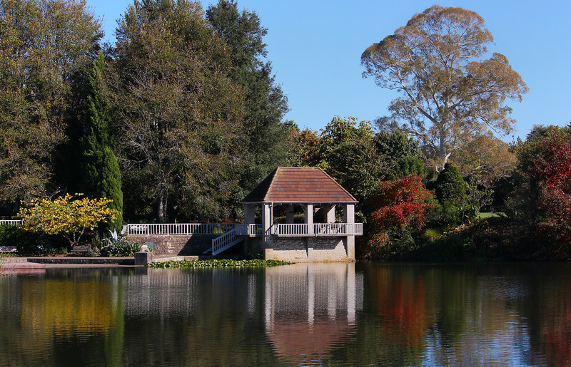 Round 308  - Turtle Lake Hamilton by Sally.jpg
