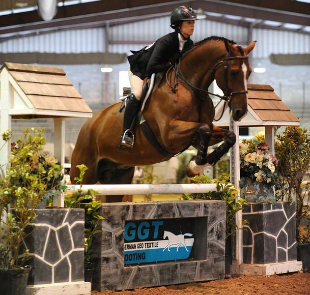 Horse show (61).jpg