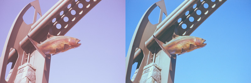 Old Fujichrome Provia before & after.