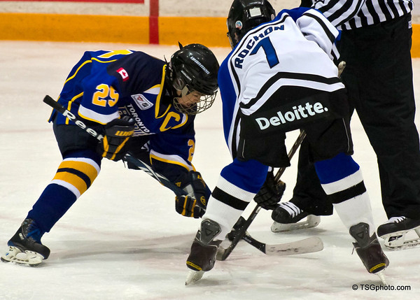 Toronto City Blues Peewee AA                    Regular Season