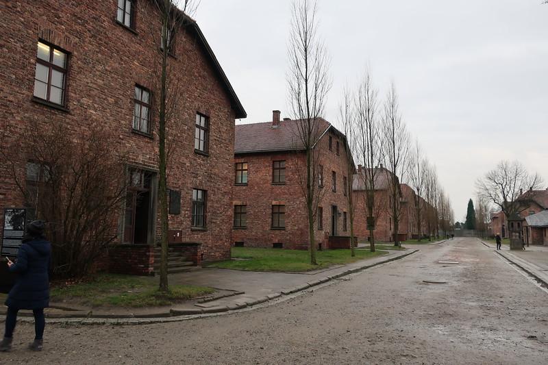 Auschwitz -Birkenau23.JPG