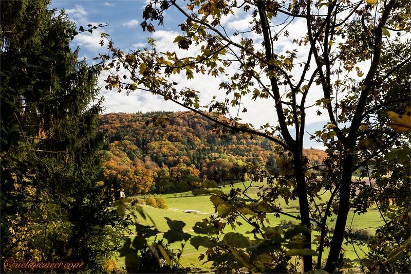 2016-10-22 Herbststimmung Aargau 0U5A1168.jpg