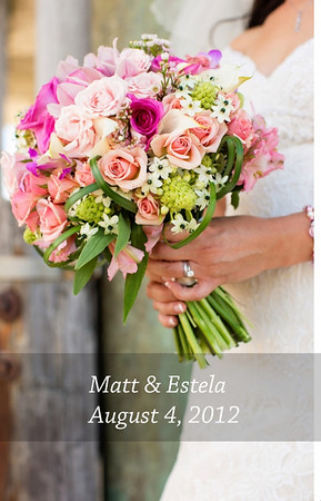 Matt and Estella's Album