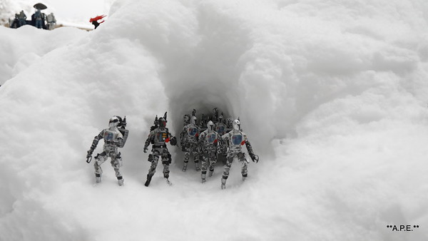 B.A.T.S IN SNOW CAVE