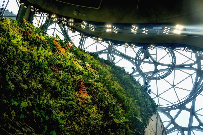 vertical-garden.jpg