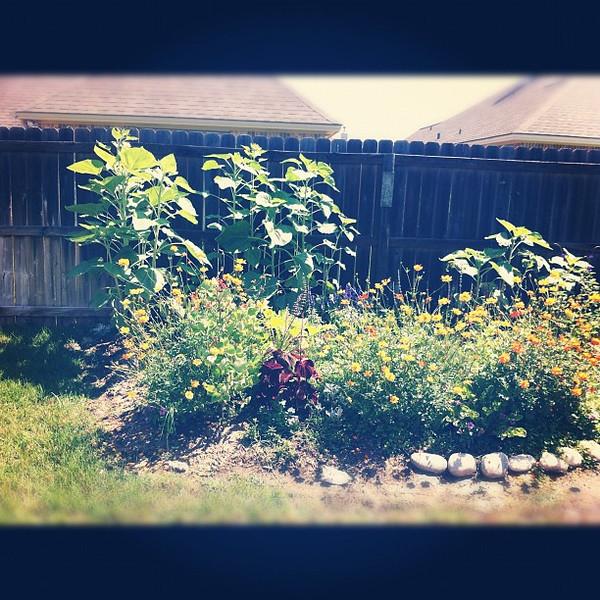 2012-05-18_1337367465.jpg