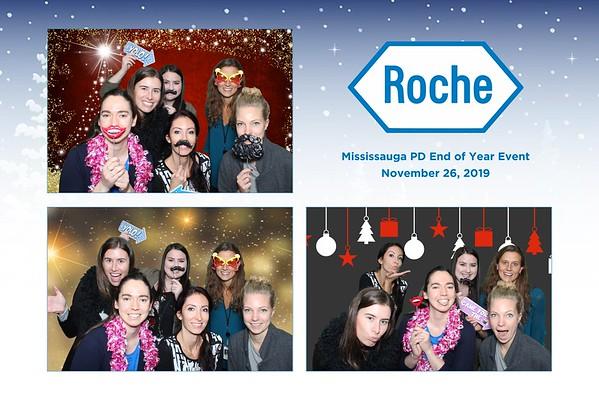 Roche 2019