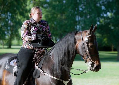 Oshkosh Charity Horse Show 2016