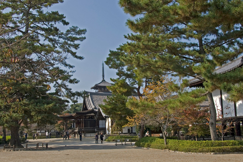 Pine trees and tourists at the grounds of Horjuyi Temple in Japan