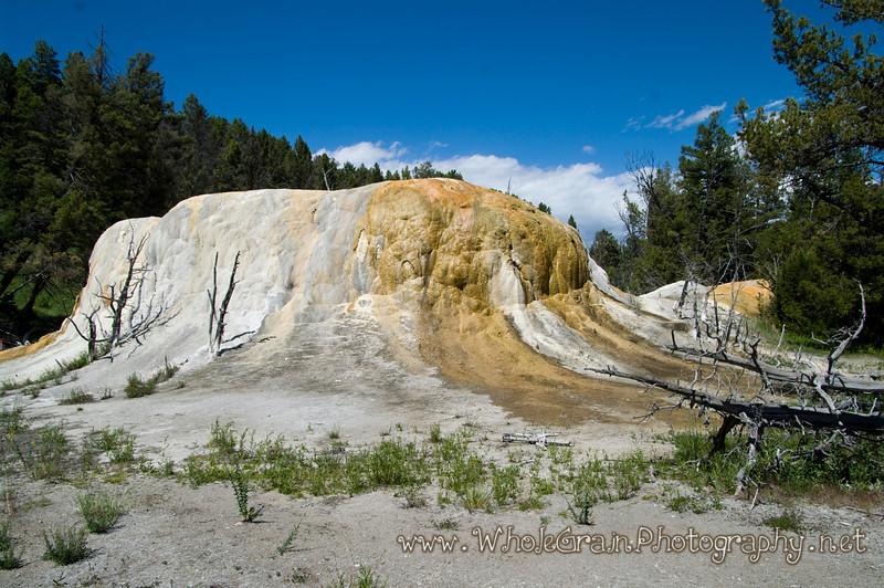 20100713_Yellowstone_2801.jpg