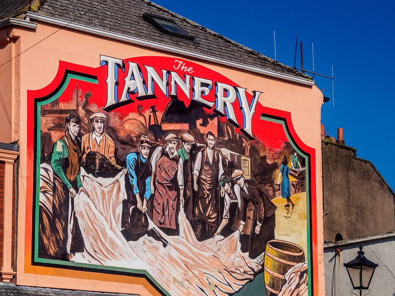 The Tannery, Carrick-on-Suir